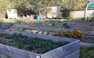 A propos du compost, présentation des méthodes et conseils