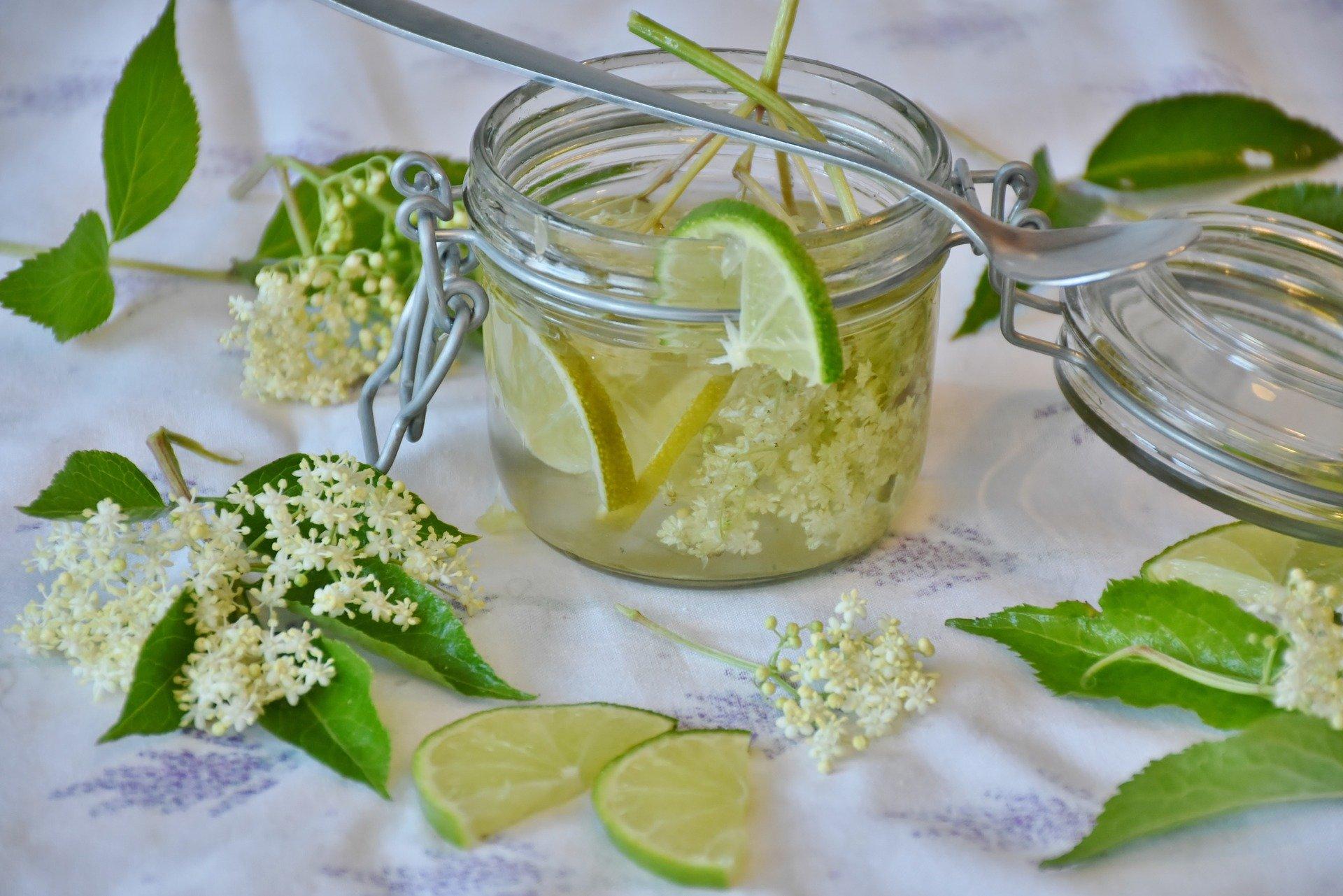 sirop de sureau, recette de cuisine, plante du mois, mai