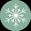 hiver plante de saison