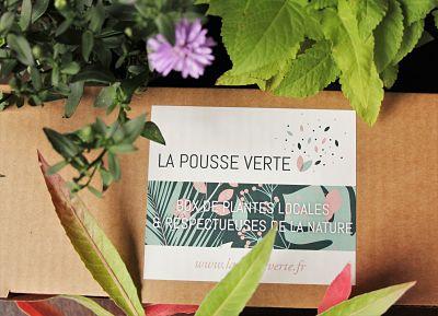 box plantes ecoresponsable comestible