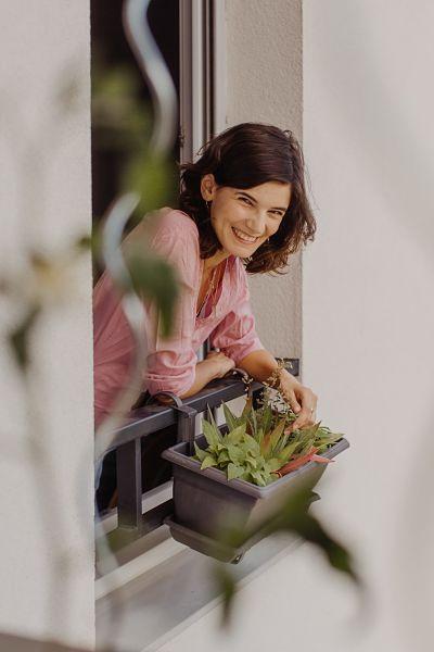 box plantes balcon