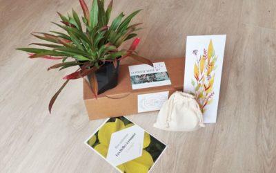 La box de plantes de l'automne 2020