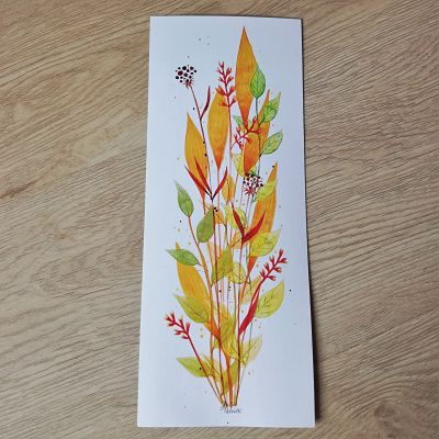 box cadeau plantes illustration automne
