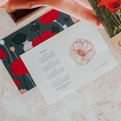 coquelicot cadeau poeme amour illustration fleurs