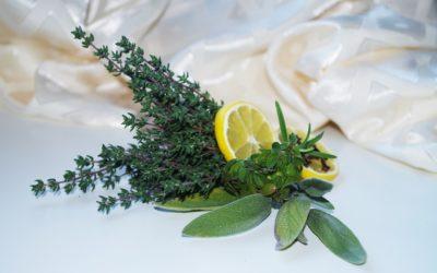 Recettes de cuisine avec le thym citron