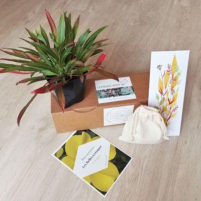 box jardinage automne ecoresponsable