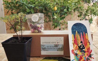 La box de plantes de l'hiver 2020-2021