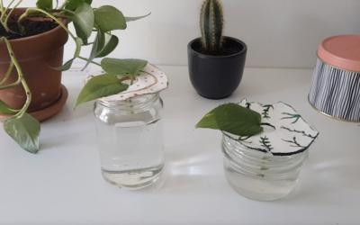 Tuto DIY du mois : réaliser une bobèche pour vos boutures