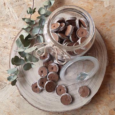 pastilles coco graines jardinage