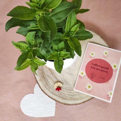 cadeau fete meres plante bijoux artisanal
