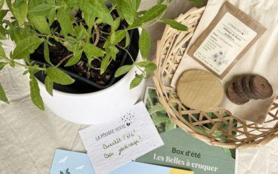 La box de plantes écoresponsable de l'été 2021