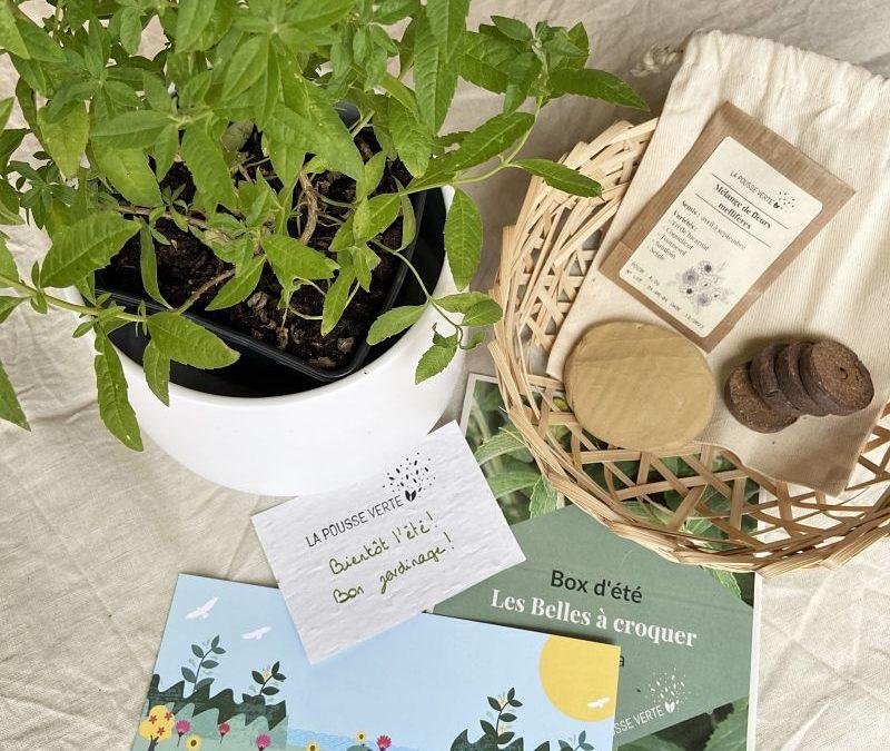 box plante jardinage ecoresponsable
