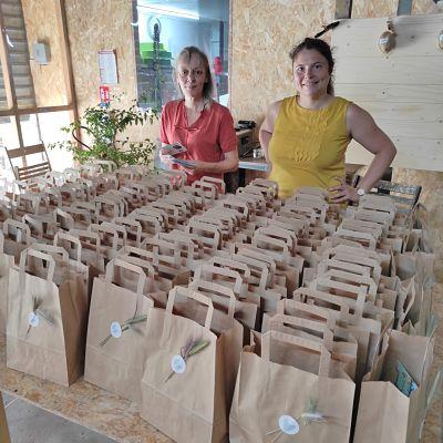 cadeau plante entreprise evenement ecoresponsable