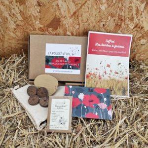 kit bombes a graines fleurs melliferes abeilles